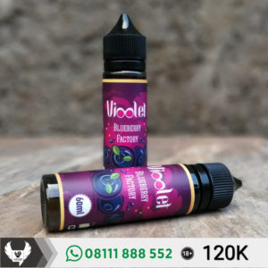 Vioolet Blueberry Factory Liquid
